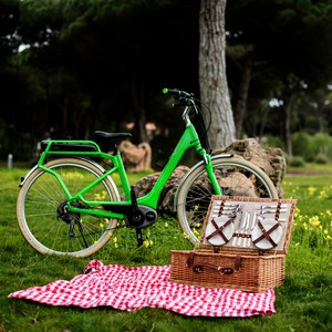 Picnic Basket Tour